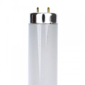 TUBO T12 BI-PIN